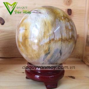 quả cầu gỗ hóa thạch